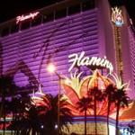 フラミンゴ・ラスベガス | Flamingo Las Vegas